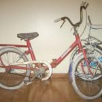 Bicicleta Ariela