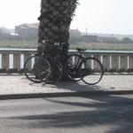 Bicicletas em Mira